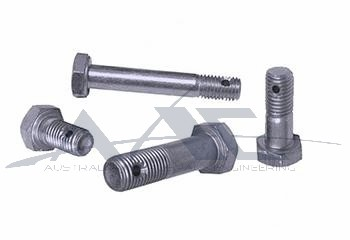 Bolt Drilled S/S