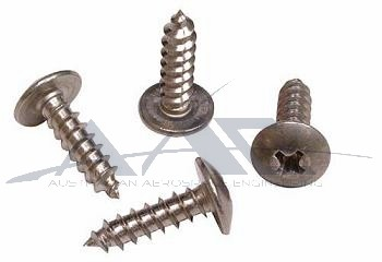 Sheet Metal Screw S/S